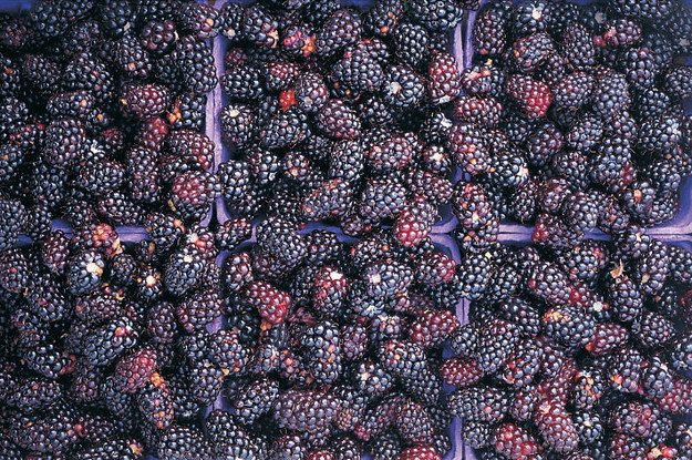 This Is What Berries Actually Look Like
